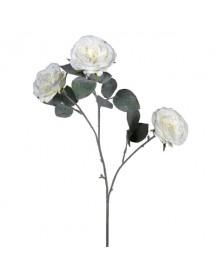 Dekoratyvinė gėlė rožė...